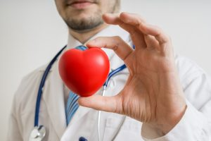 Doctor holds heart in hand.